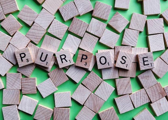 vision and purpose statements